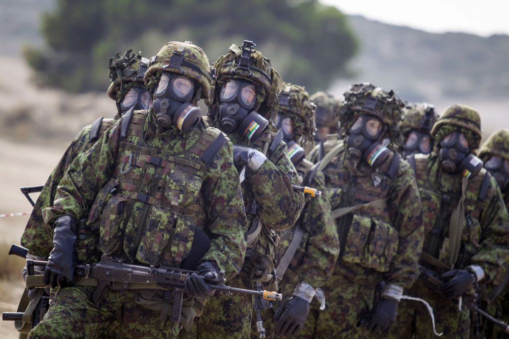 My Estonian Military/Police Stuff 15201010