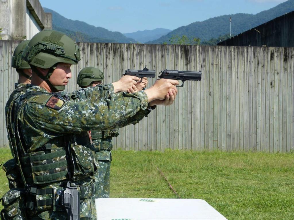 Examining Some Taiwanese Camos 60329110