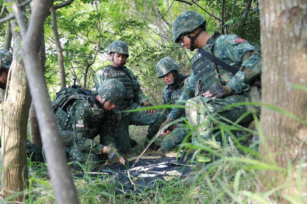Examining Some Taiwanese Camos 71680710