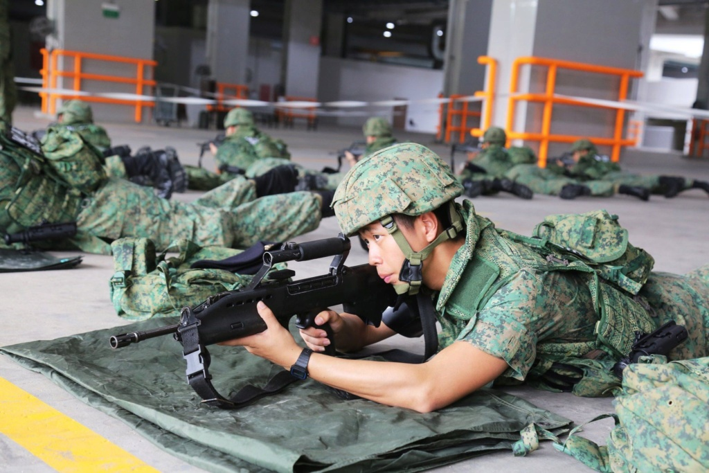 Singapore Digitals and some history of Singapore Combat Dress 80381110