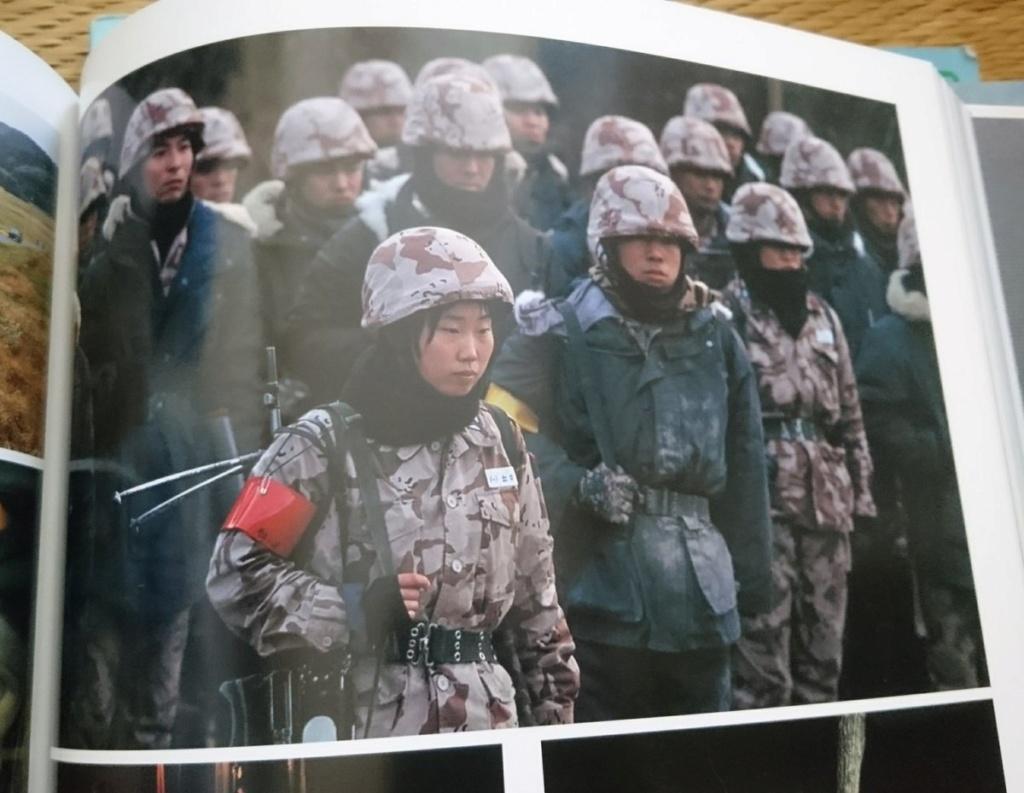 JASDF Trial Desert Camouflage Air_se10