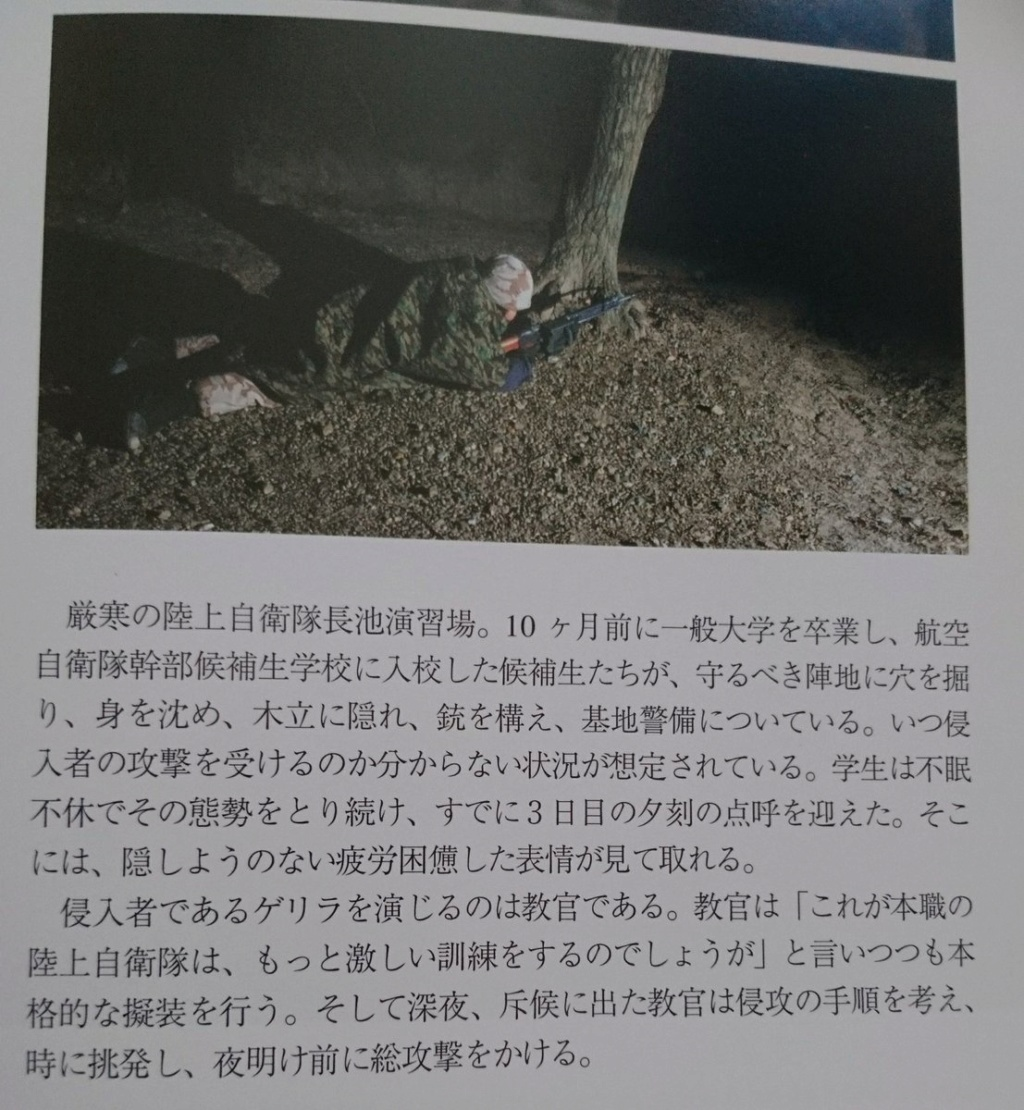 JASDF Trial Desert Camouflage Air_se12