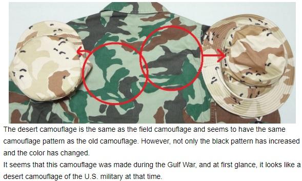 JASDF Trial Desert Camouflage Desert10