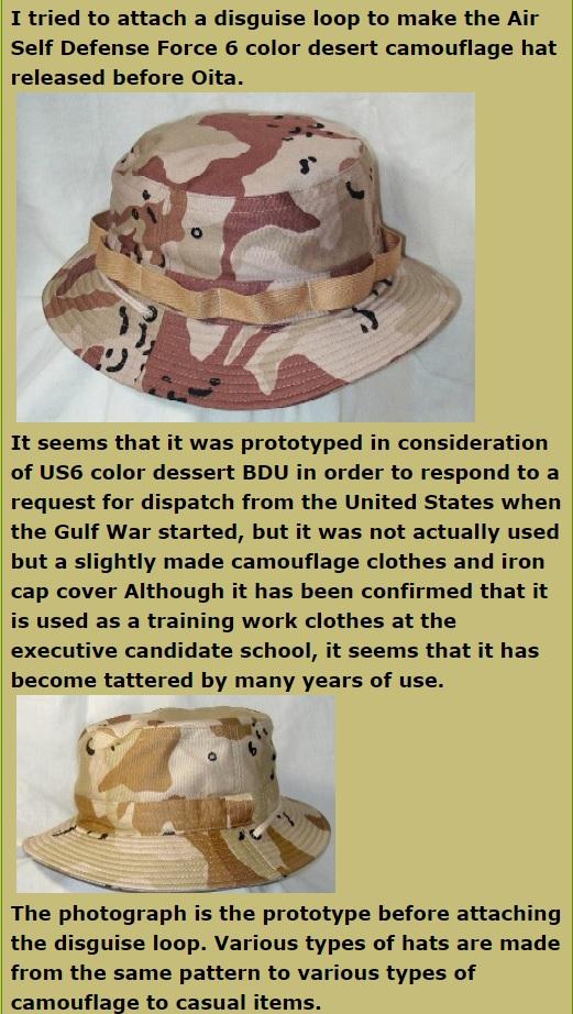 JASDF Trial Desert Camouflage Info_o10