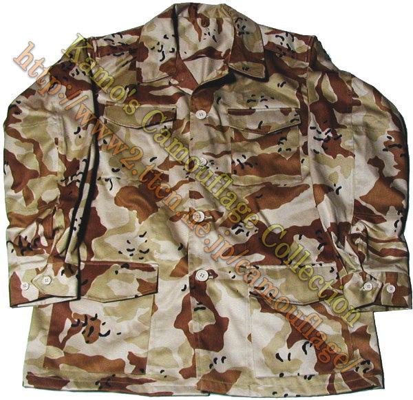 JASDF Trial Desert Camouflage Japane11