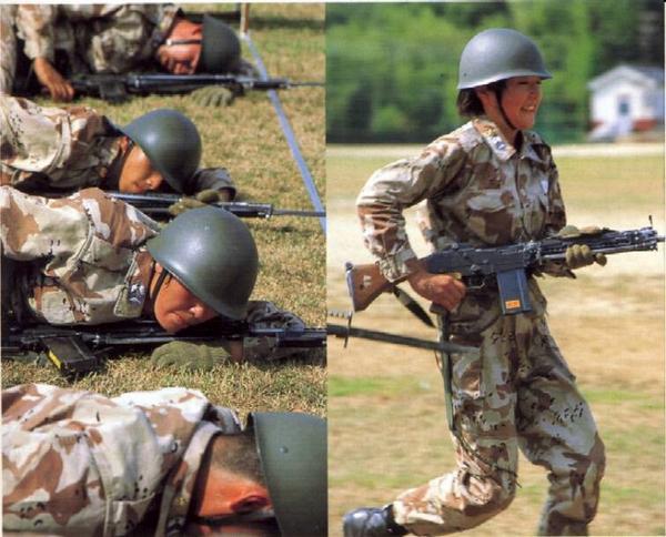 JASDF Trial Desert Camouflage Novemb10