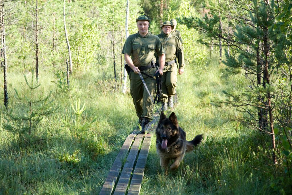 My Estonian Military/Police Stuff Piirip10