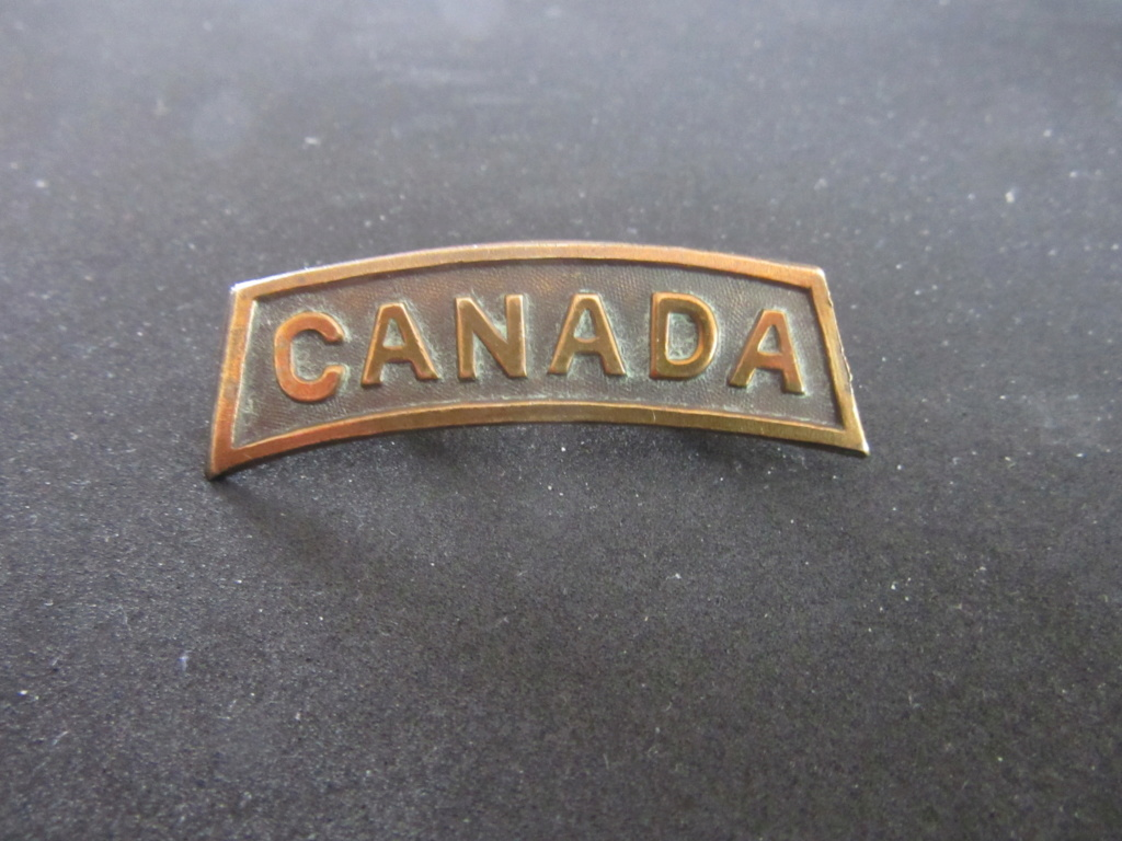 Lot rarissime de badge canadiens ww1 Should18