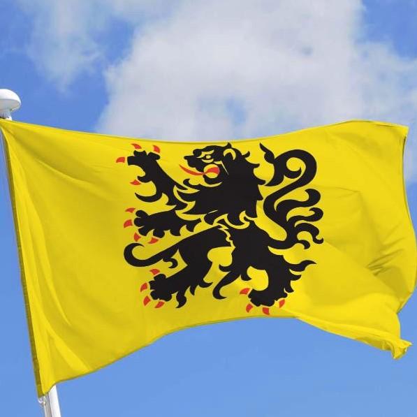 insigne dragon à identifier Vlaams10