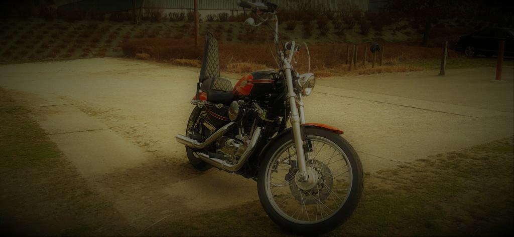 combien sommes nous en 1200 Sportster sur Passion-Harley - Page 39 Kq_211