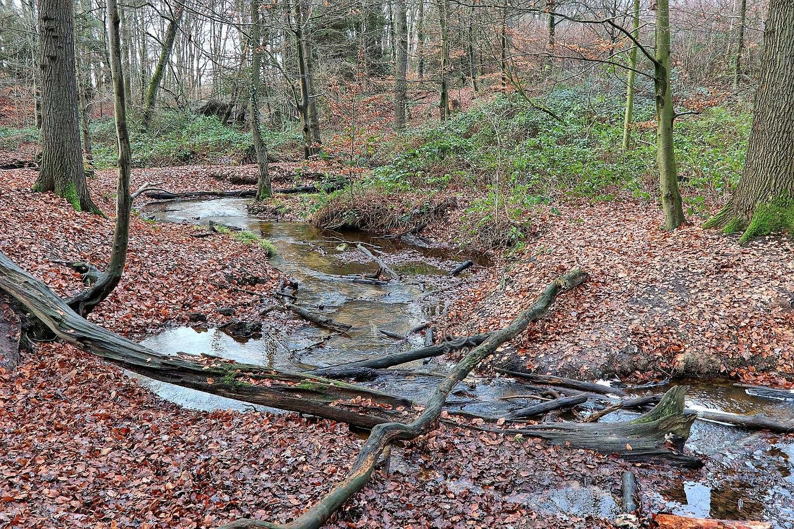 Märchenwald Dingden 0_110