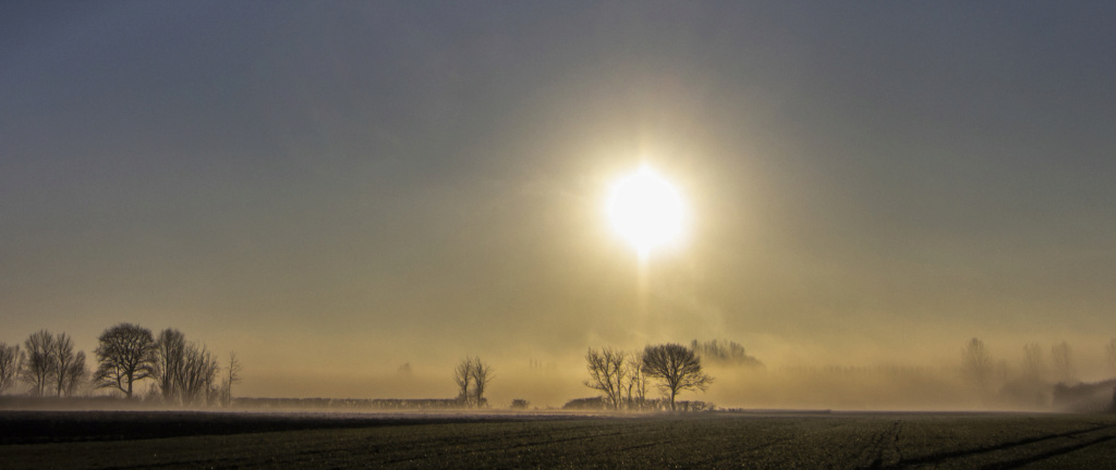 brume matinale Hazebr51