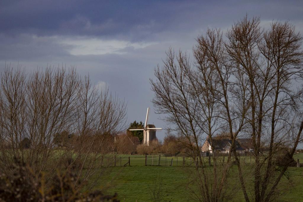 lumières Flamandes  Img_9812