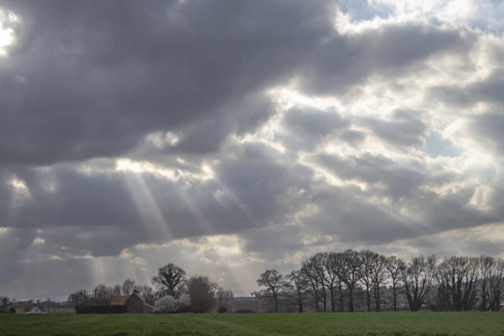 lumières Flamandes  Img_9813