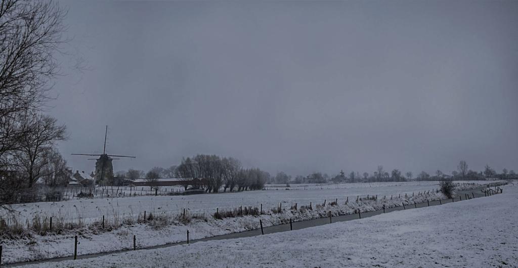 neige le 16 01 19 Neige_10