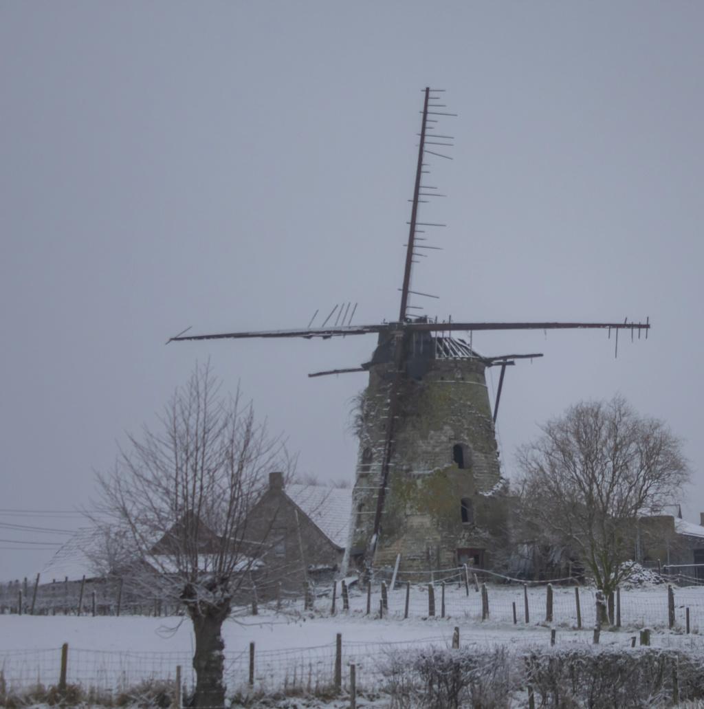 neige le 16 01 19 Neige_11