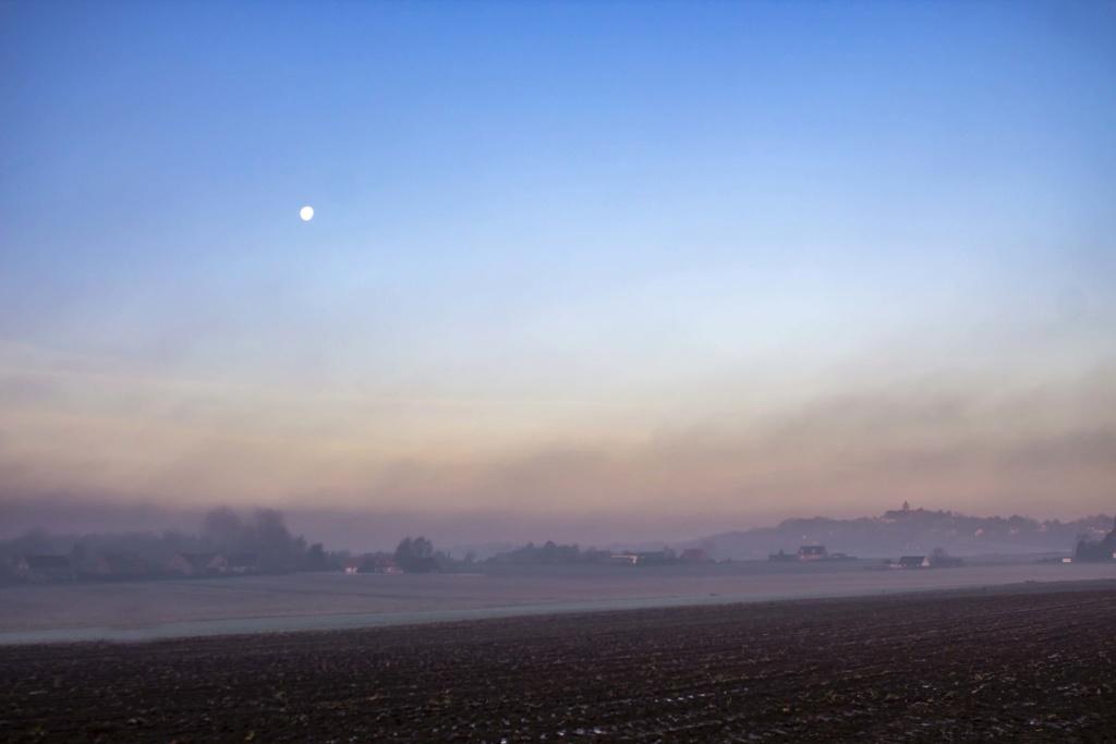 aurores brumeuses sur Cassel et la Forêt de Nieppe St_syl11