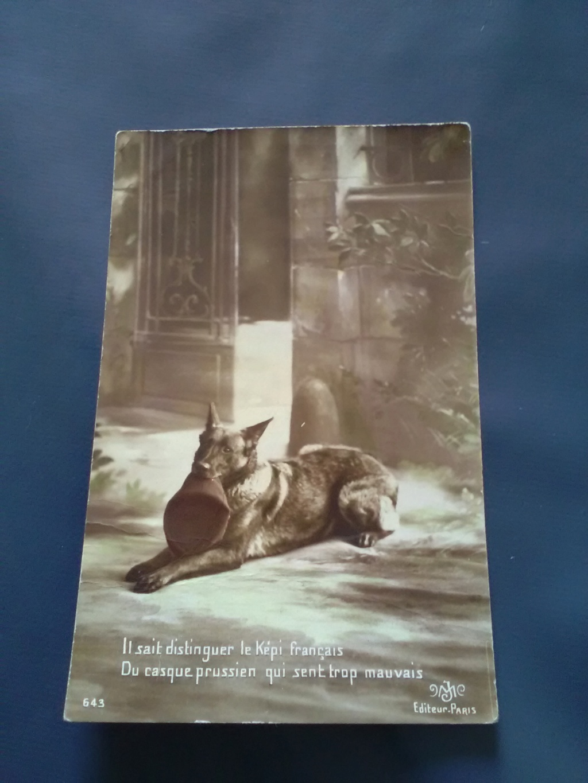 Chien porteur de journaux 1915 Img_2063