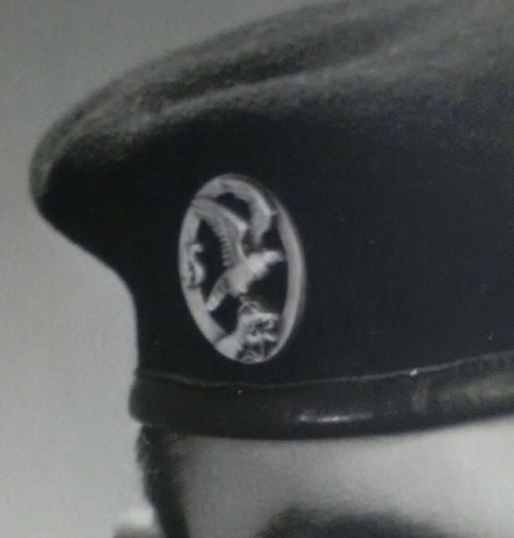 Insigne de béret à identifier - Commando ? Img_2459