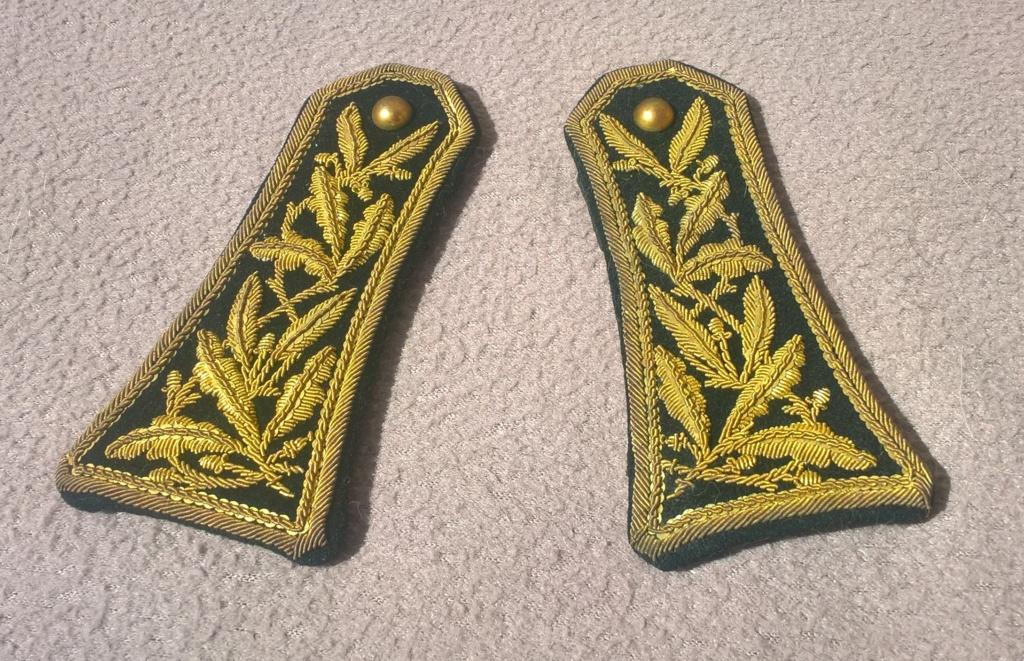 Paire d'épaulettes du corps des administrateurs des communes mixtes Wp_20450