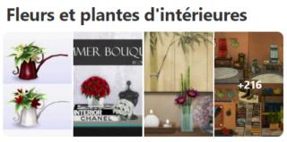 Les plantes, buissons et fleurs intérieur 221