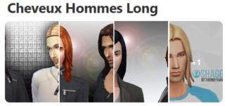 Cheveux Longs pour Hommes (Style Cartoon) 324
