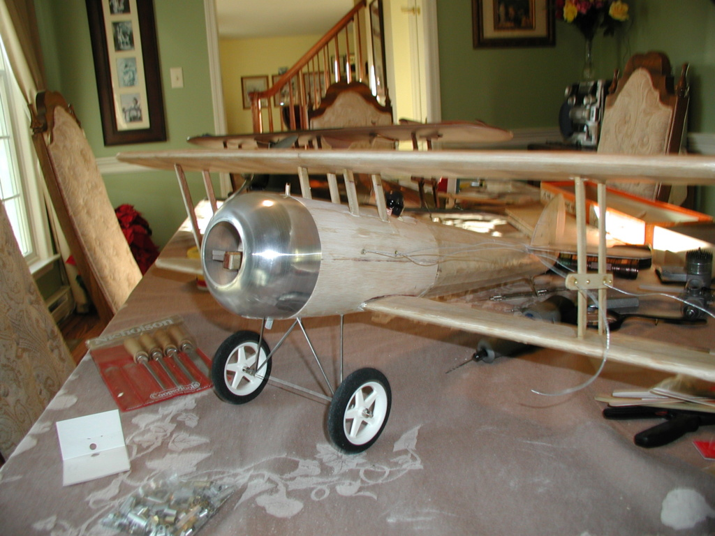 Biplane struts and covering. 2_nieu12