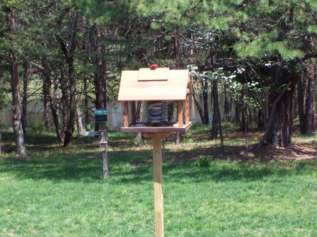 Bird Houses anyone? Bird_h10