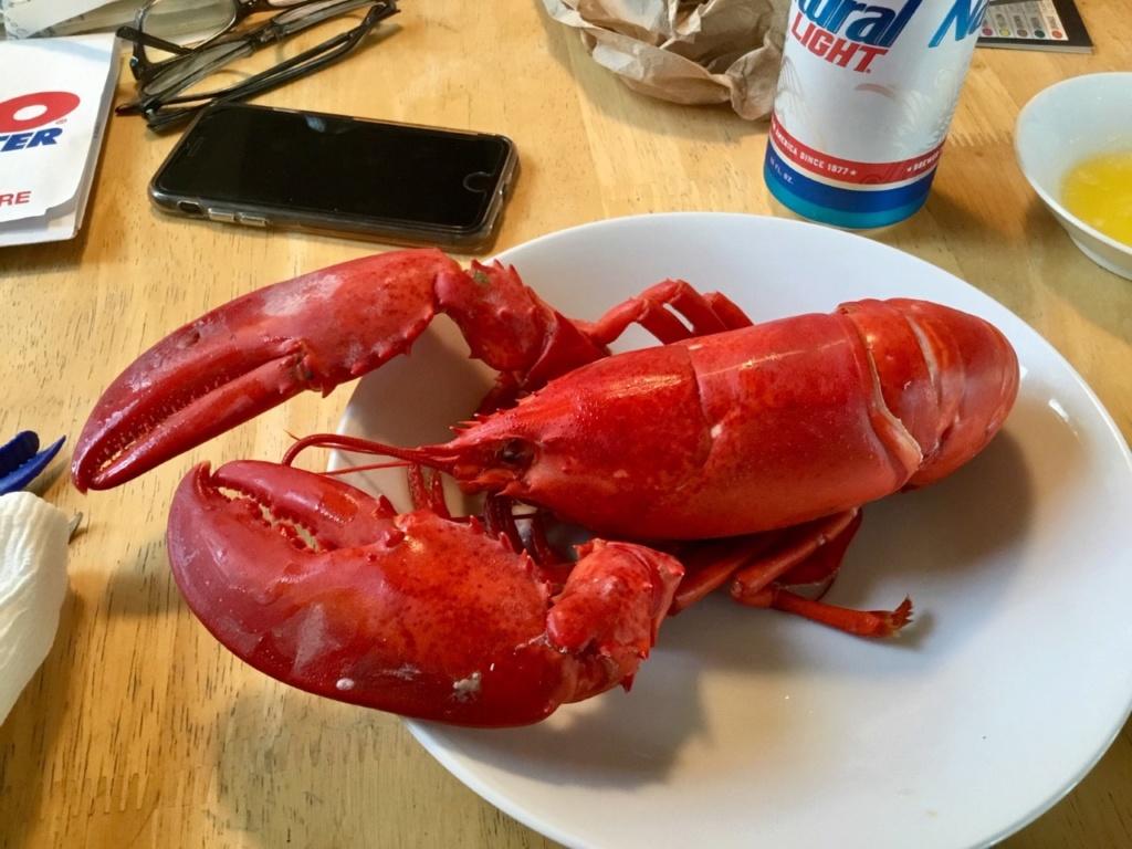 Ok, everybody gets a week off Lobste10