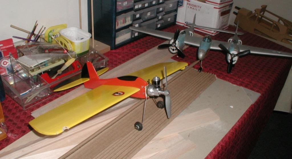 SIG's airfoils P1011547