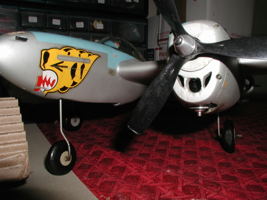 SIG's airfoils P1011553