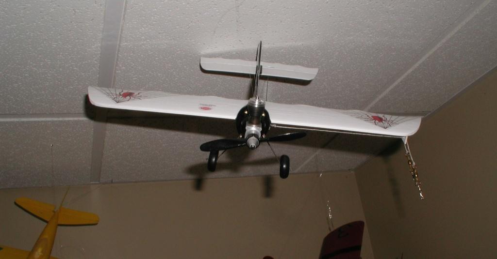 SIG's airfoils P1011568