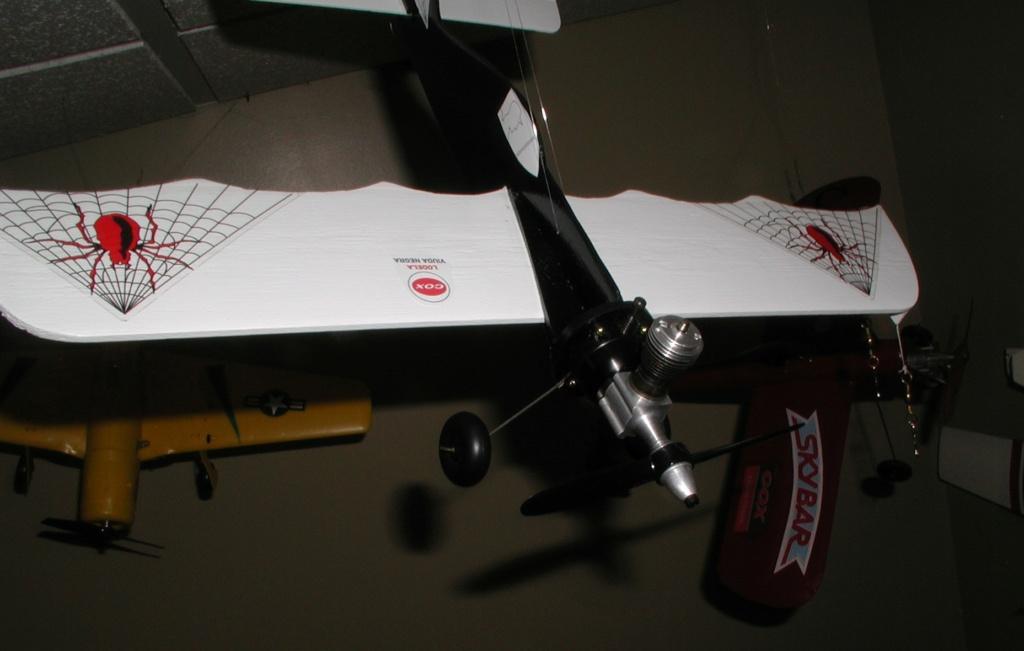 SIG's airfoils P1011569