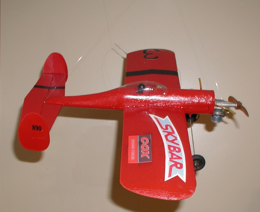 Tail-less wonders Pa090016