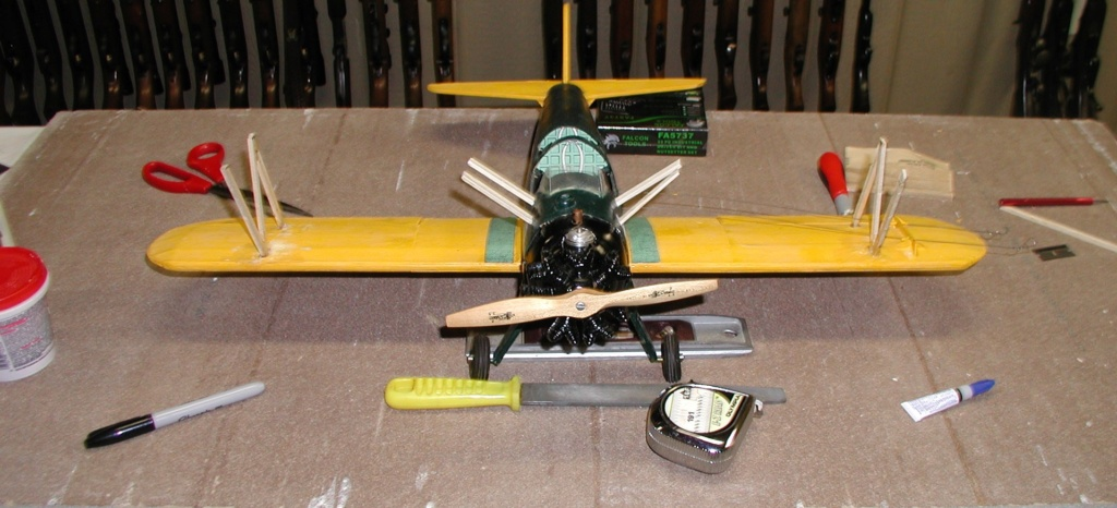 Biplane struts and covering. Pt-19_20