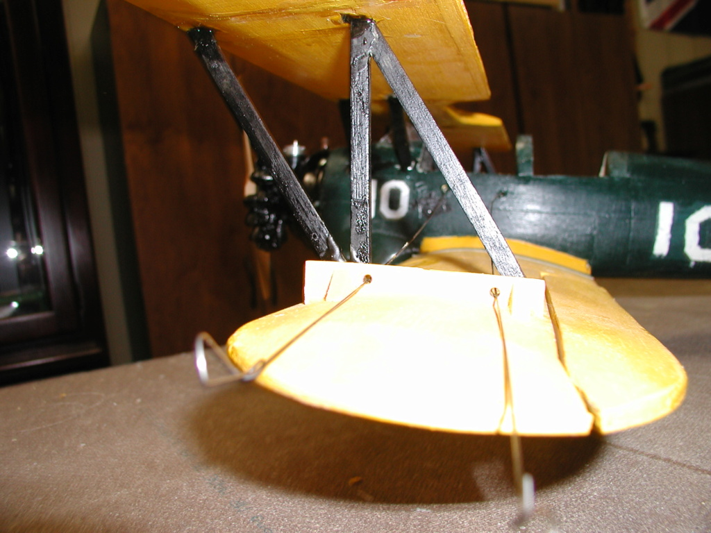 Biplane struts and covering. Pt-19_22