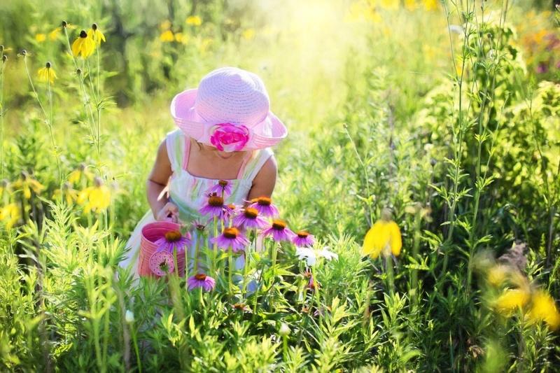 Le printemps est arrivé Little10