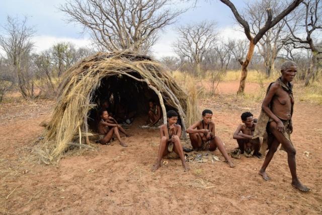 Retour sur notre voyage en solo Namibie - Botswana - Zimbabwe  J9fc5g10