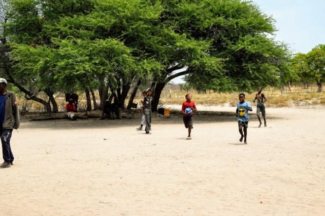Retour sur notre voyage en solo Namibie - Botswana - Zimbabwe  T-pus110