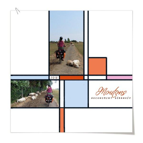 challenge scraplift ---> 31 octobre Mouton10