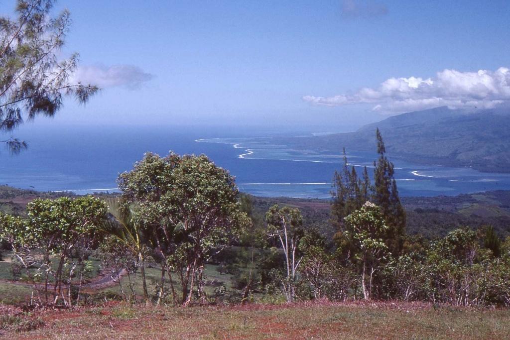 [CAMPAGNES C.E.P.] TAHITI - TOME 2 - Page 30 D40