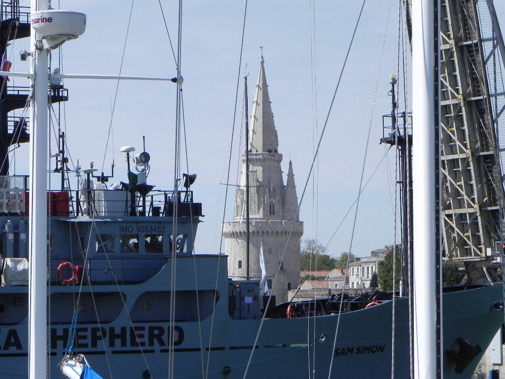 [Vie des Ports ] Port de La Rochelle  - Page 2 Dscn6212