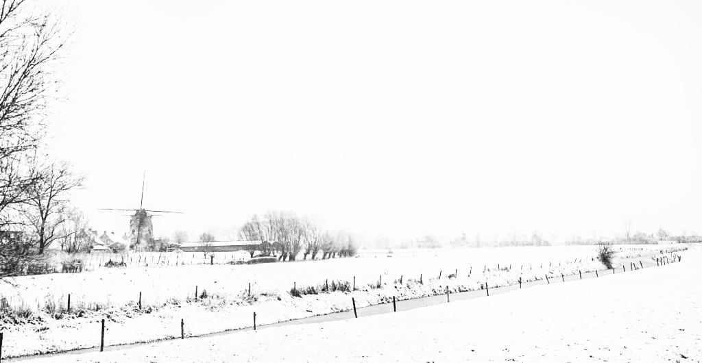 neige le 16 01 19 Neige_14
