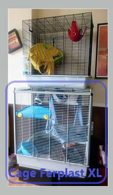 A Vendre Cage Ferplast Furet/Rat/ Rongeur XL et Cage Freddy Savi 92 RP Dsc_0013