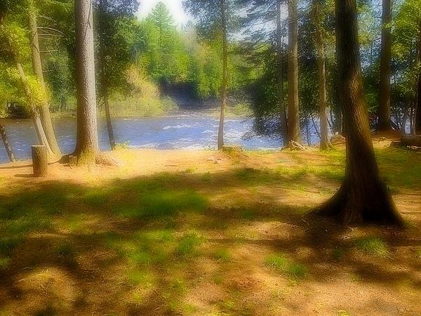 Splendide coin naturiste près de Québec ! Img_1210