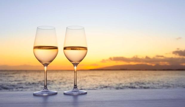 Buvez-vous de l'alcool lors d'une sortie naturiste ? Wine-g10