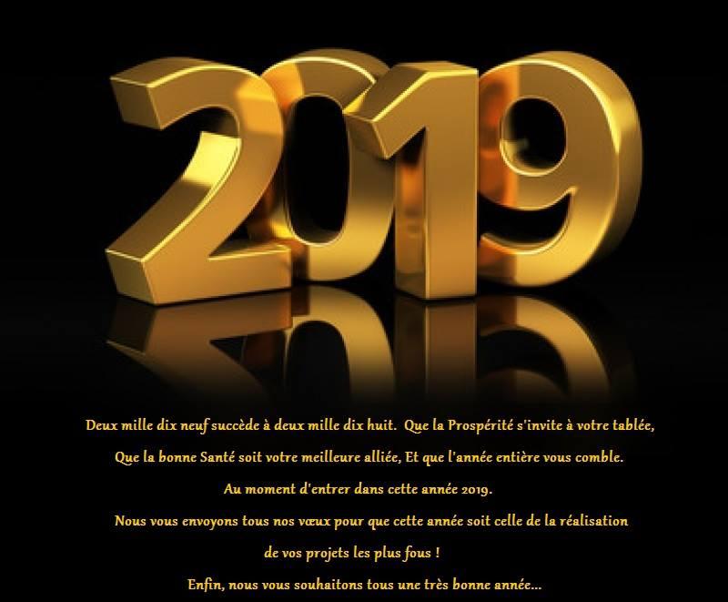 Bonne fête à tous - Noël 2018 et à suivre => 1er de l'an 2019 ;) - Page 2 201910