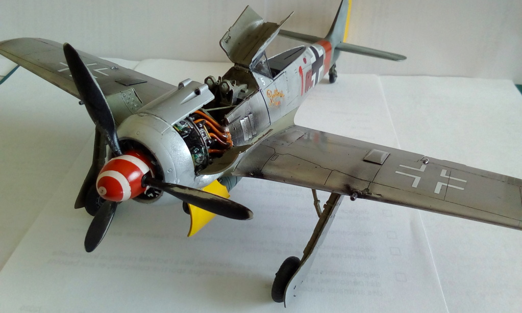 [REVELL] FOCKE WULF Fw 190  A8/R2 version metalique Réf 03874 Img_2170