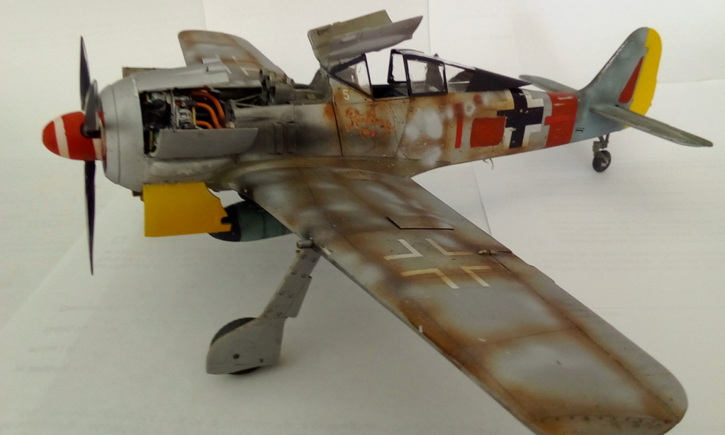 [REVELL] FOCKE WULF Fw 190  A8/R2 version metalique Réf 03874 Img_2175