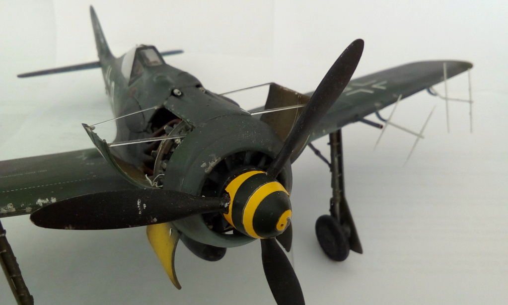 [REVELL] FOCKE WULF Fw 190  A8/R2 version metalique Réf 03874 Img_2181